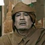 Kaddafi : la traque