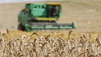 Le Maroc est l'un des principaux importateurs de blé en Afrique.