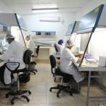 41 cas de choléra ont été confirmés en Algérie le 23 août (photo d'illustration).