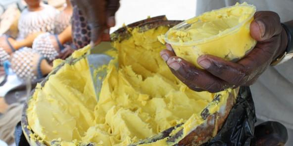 Burkina Faso : pas de rêve américain pour le karité de Velegda ...