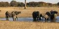 Un parc naturel au Zimbabwe