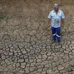 Un fermier sud-africain sur ses terres desséchées, le 12 novembre 2015, à Groot Marico
