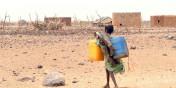 Sécheresse : près d'un million d'enfants atteints de malnutrition en Afrique de l'Est et australe