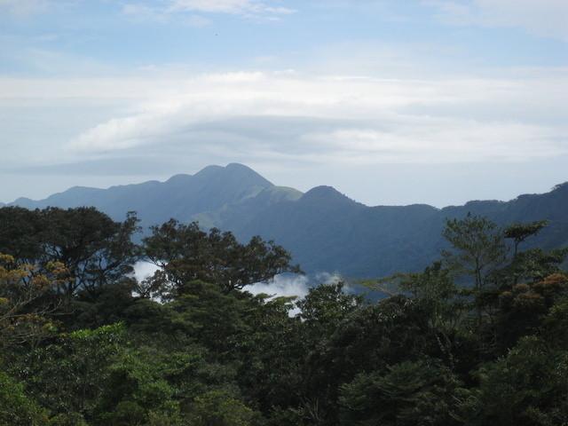 Wikimedia Commons/Yakoo1986