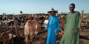 Nouvelle vague de violences intercommunautaires meurtrières dans le centre du Mali