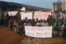 Des manifestants contre Socfin dans la région de Dizangué, au Cameroun, le 14 novembre 2016.