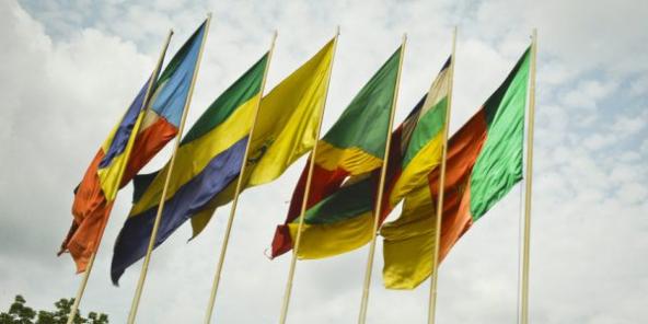 Drapeaux des pays membres de la Cemac au siège de l'organisation, à Bangui, en 2016