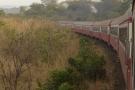 Un train circulant près de la commune de Bamkin au Cameroun.