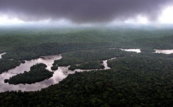 Le bassin du Congo est considéré comme le second poumon vert de la planète, après l'Amazonie.