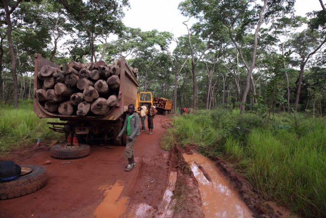 Un camion transportant du bois rouge tombe en panne sur la route Kasenga-Pweto, dans le sud-est de la RDC.
