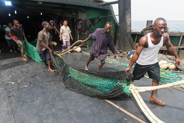 À bord, les agents de l'unité de protection des pêches ont trouvé un filet dont les mailles ont une largeur inférieure à ce qu'exige la loi.