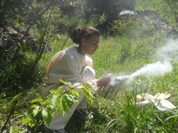 Des femmes de la région en plein apprentissage des méthodes et techniques liées à l'apiculture.