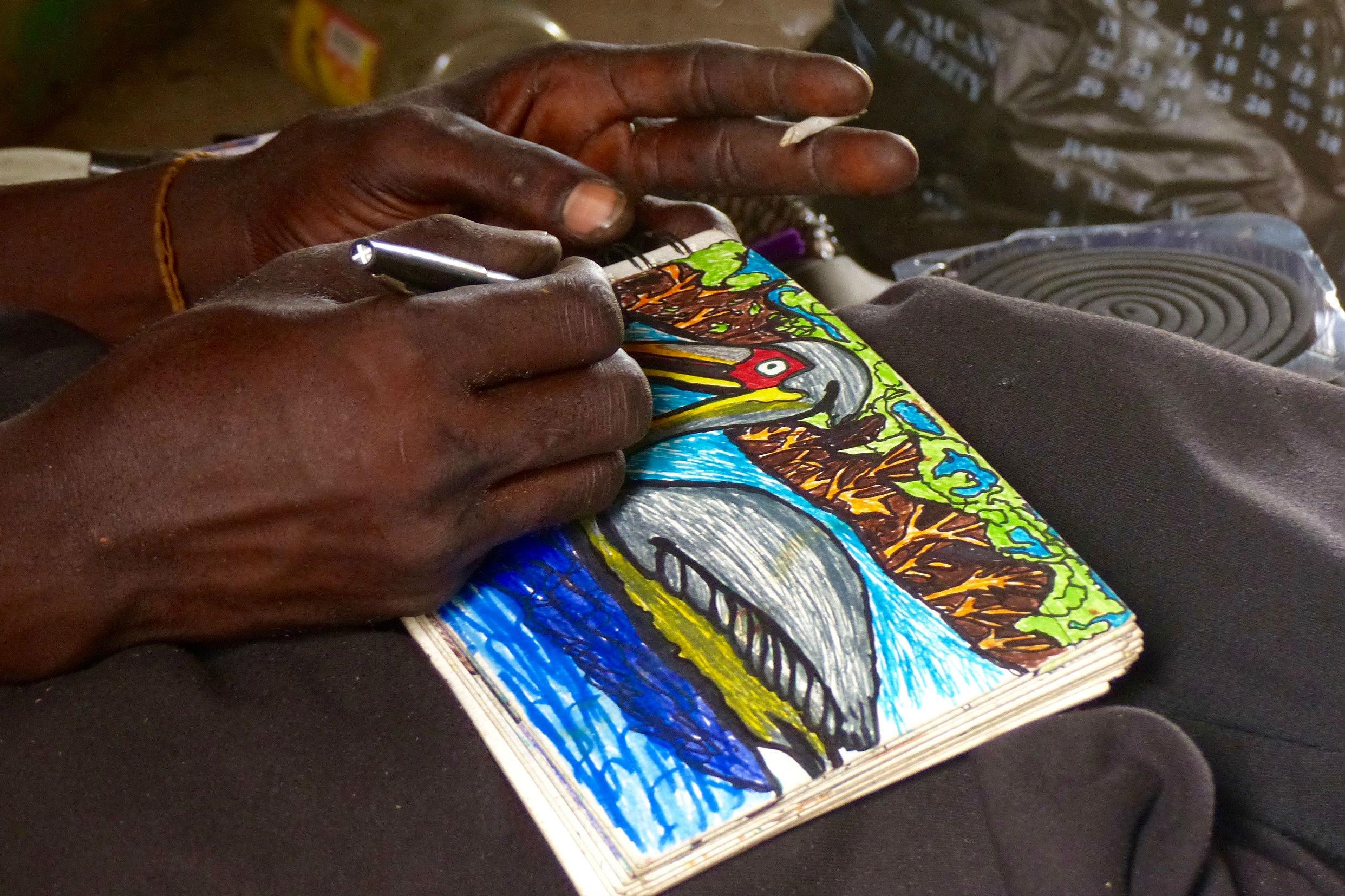 Jean-Dominique Senghor dessine un pélican gris sur son carnet.
