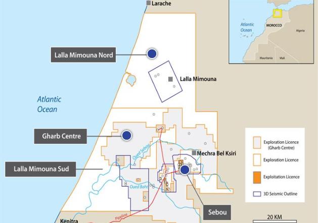 Localisation des activités de SDX Energy au Maroc.