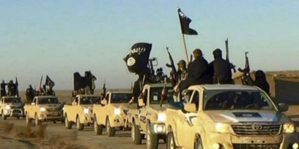 Maroc : plus de 200 ex-combattants de l'État islamique sont de retour dans  le pays – Jeune Afrique