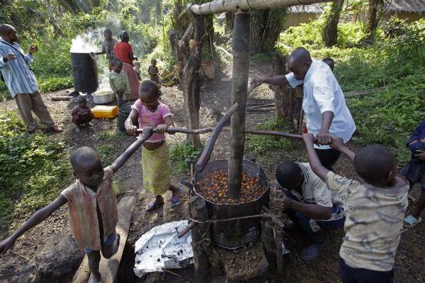 Image d'archive : une famille broie des noix de palmiers à huile à Walikale dans l'est de la RDC le 18 septembre 2010. C'est également dans les palmiers à huile que Feronia est active depuis le rachat des actifs de PHC en 2009.