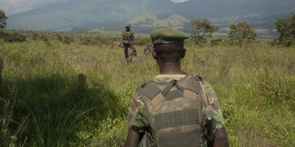 Des soldats congolais près de Goma, dans l'est de la RDC, le 25 octobre 2013 (illustration).