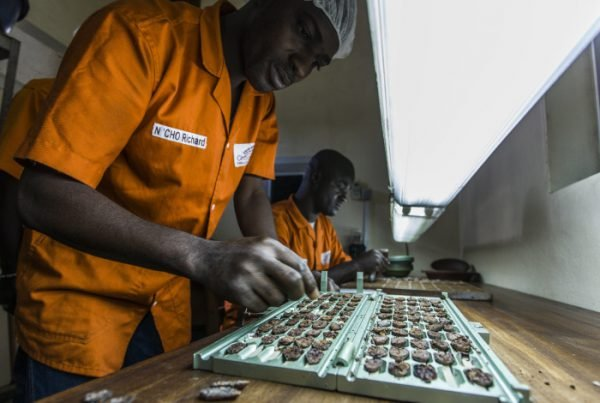 Unité de transformation de cacao de l'usine Choco Ivoire à San Pedro (Côte d'Ivoire) en mars 2016.