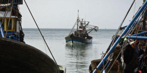 Sahara occidental : l'UE prête à négocier un nouvel accord de pêche avec le Maroc
