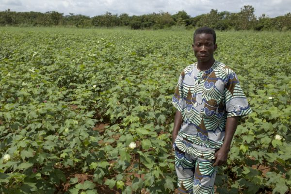 Un exploitant de coton béninois et son champ.