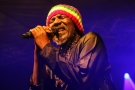 Le chanteur ivoirien Alpha Blondy.