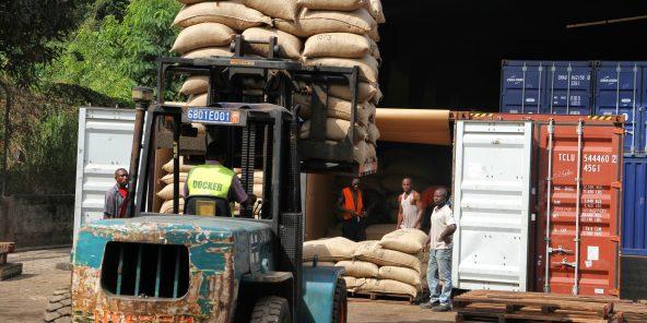 SAF Cacao entreprise de negoce de cacao  San Pedro Cote d'Ivoire le 19/01/2016
