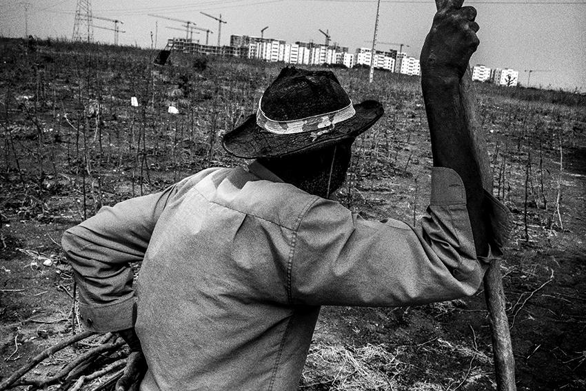 Un agriculteur travaille ses cultures de gombos en bordure du futur pôle urbain de Diamniadio, au Sénégal.