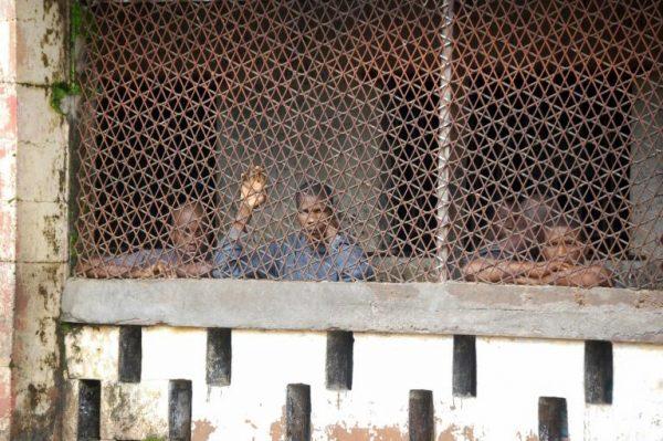 Des détenus derrière des grilles de la prison de Magburaka, le 10 octobre 2018 en Sierra Leone Des détenus derrière des grilles de la prison de Magburaka, le 10 octobre 2018 en Sierra Leone.