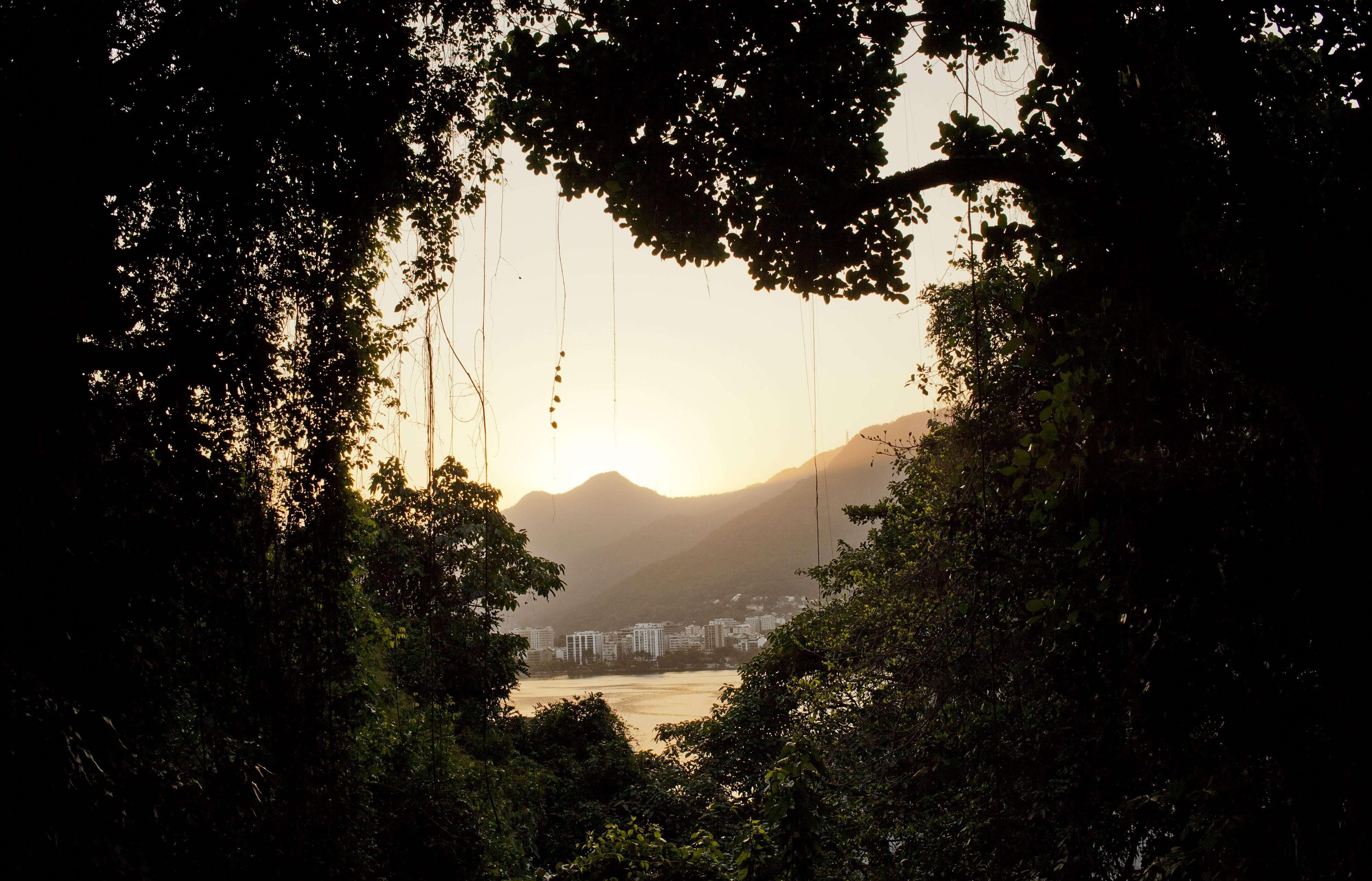 la lagune Lagoa Rodrigo de Freitas est vue depuis le Quilombo Sacopa à Rio de Janeiro, au Brésil.