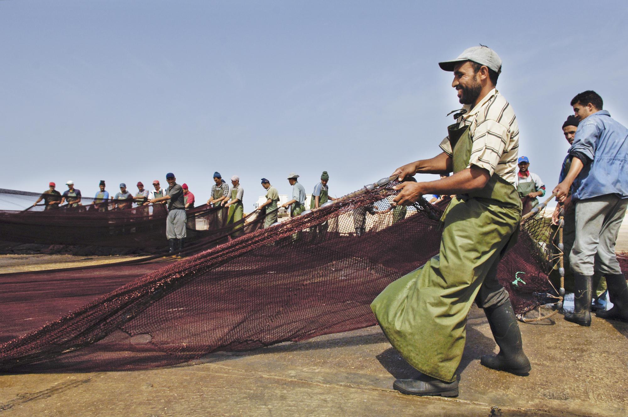 Des pêcheurs sur le port de Dakhla.