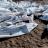 Les corps des victimes d'un naufrage de deux embarcations de migrants, le 30 janvier 2019 sur une plage d'Obock, à Djibouti.