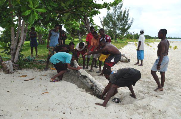 Des travailleurs dissimulent du bois de rose exploité illégalement en l'enterrant sur une plage située près du Cap Est.