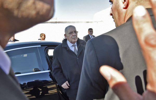 Ahmed Gaïd Salah, chef de l'état-major de l'armée algérienne, en février 2019 à Alger.