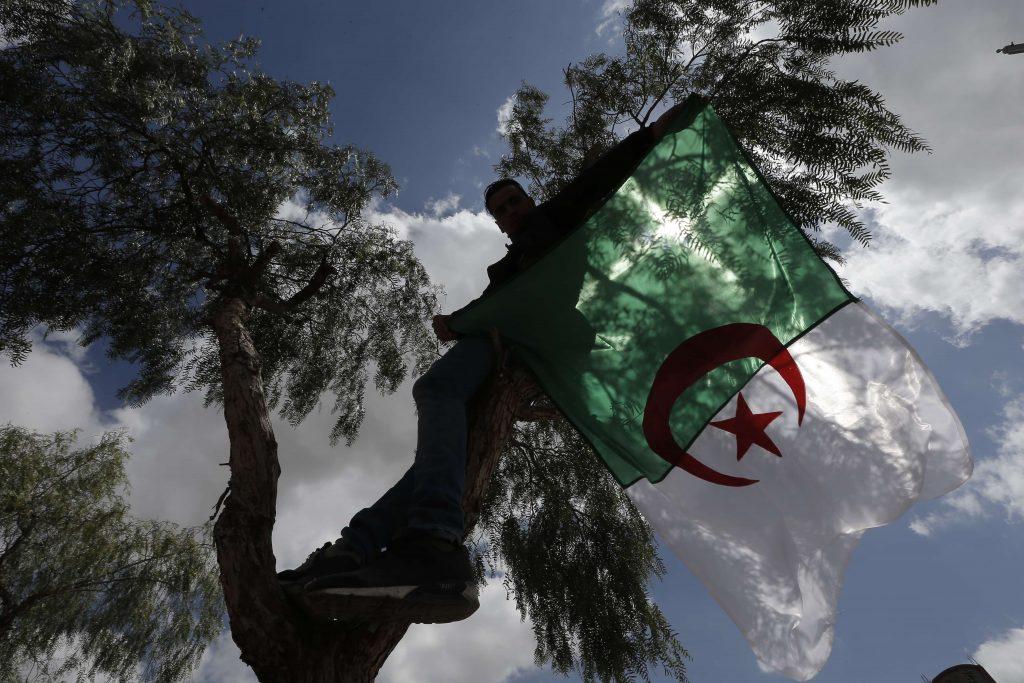 Un manifestant à Alger, le 26 avril 2019.