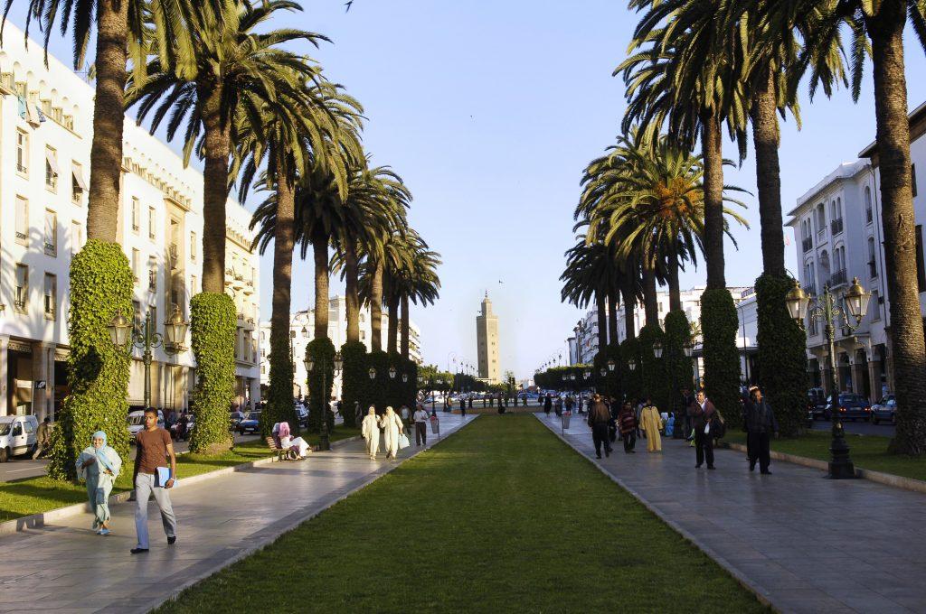 L'avenue Mohammed-V, à Rabat. En 2010, la capitale, qui compte plus de 230hectares arborés, a été proclamée «ville verte» lors de la Journée de la Terre.