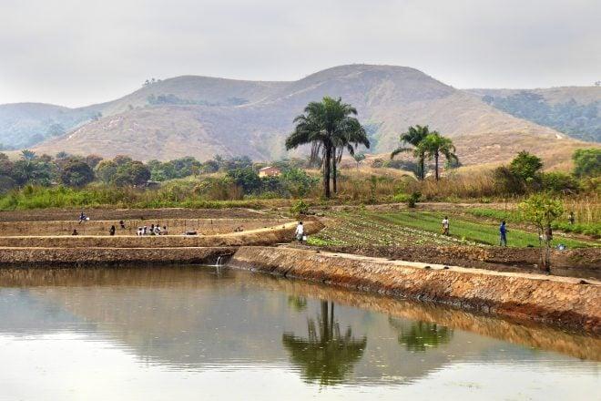 Congo-Brazzaville : paix fragile dans le Pool