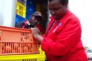 La start up Twiga Foods au Kenya propose de réduire les intermédiaires entre fermiers et distributeurs