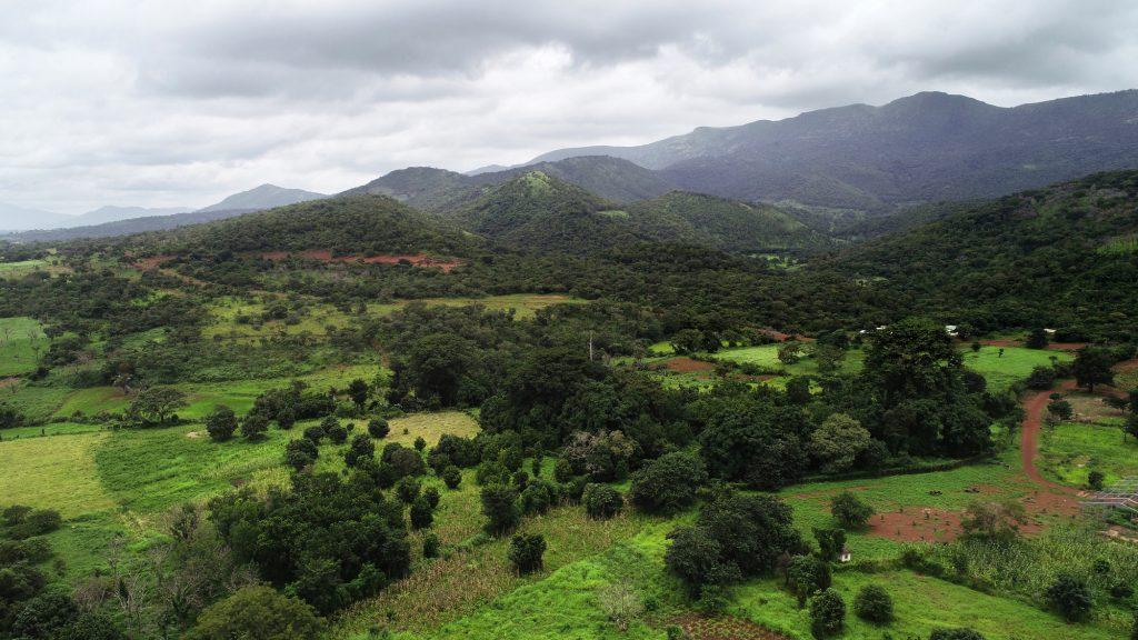 Le mont Simandou représente le plus important gisement de fer du continent.