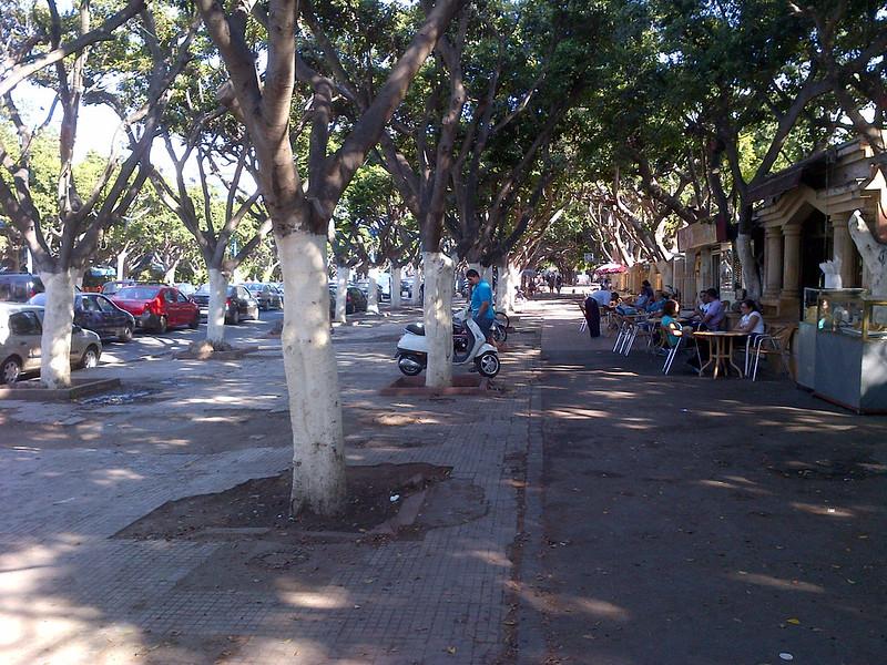 Parc de la ligue arabe, à Casablanca