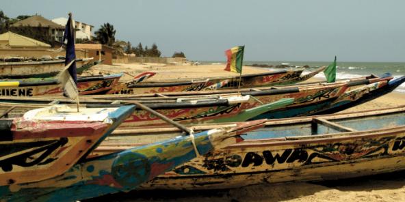 Des pirogues dans la réserve de La Somone, sur la Petite Côte, au Sénégal.