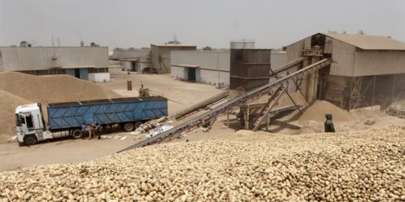 Usine West african Oil à Kahone, Sénégal.
