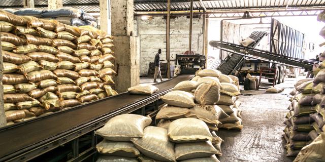Céréales : les moulins ont toujours le vent en poupe sur le continent – Jeune Afrique