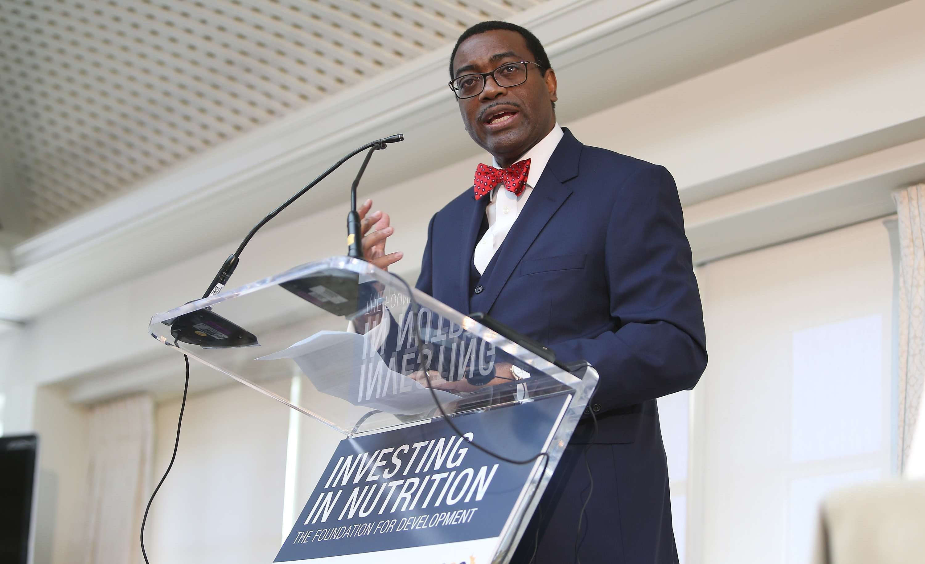 Akinwumi Adesina, le 17 avril 2016, à Washington DC.