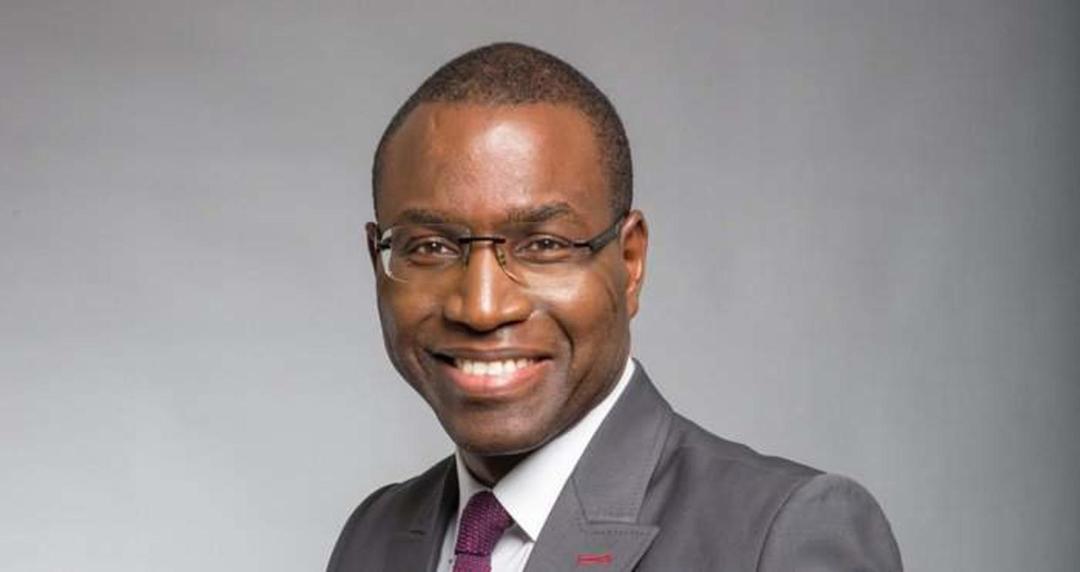 Amadou Hott, Ex-directeur général du Fonds souverain d'investissements stratégiques.