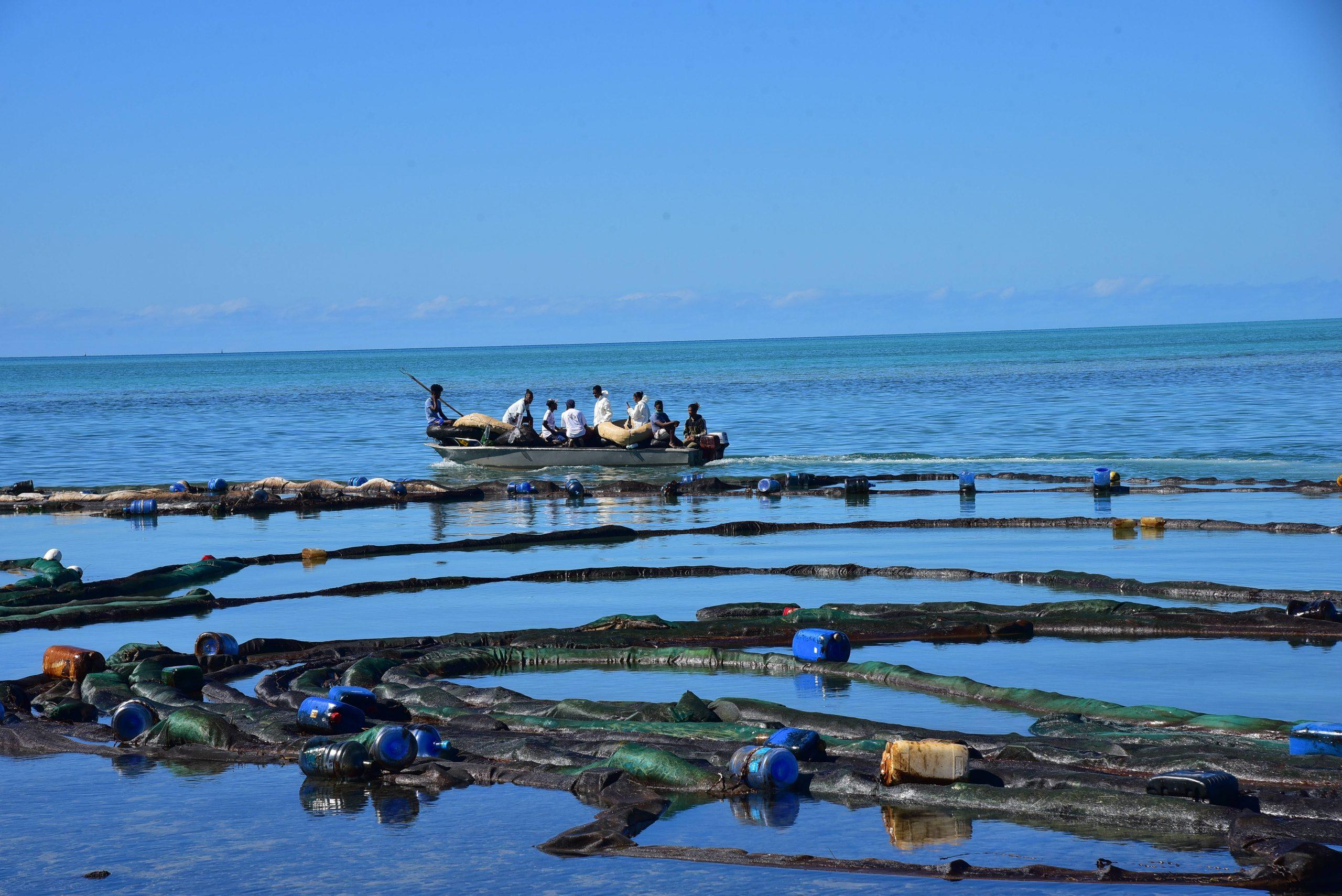 Des volontaires s'affairent, le 12 août 2020, pour contenir la marée noire à Maurice.