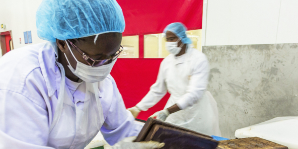 Unitat de producció de barres de xocolata del grup Cemoi, a Abidjan.