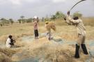 La zone industrielle permettra de transformer les produits de l'agriculture togolaise.