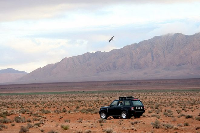 Le Sheikh Hamad Bin Issa Al Khalifa lors d'un séjour de chasse au Maroc en 2007.