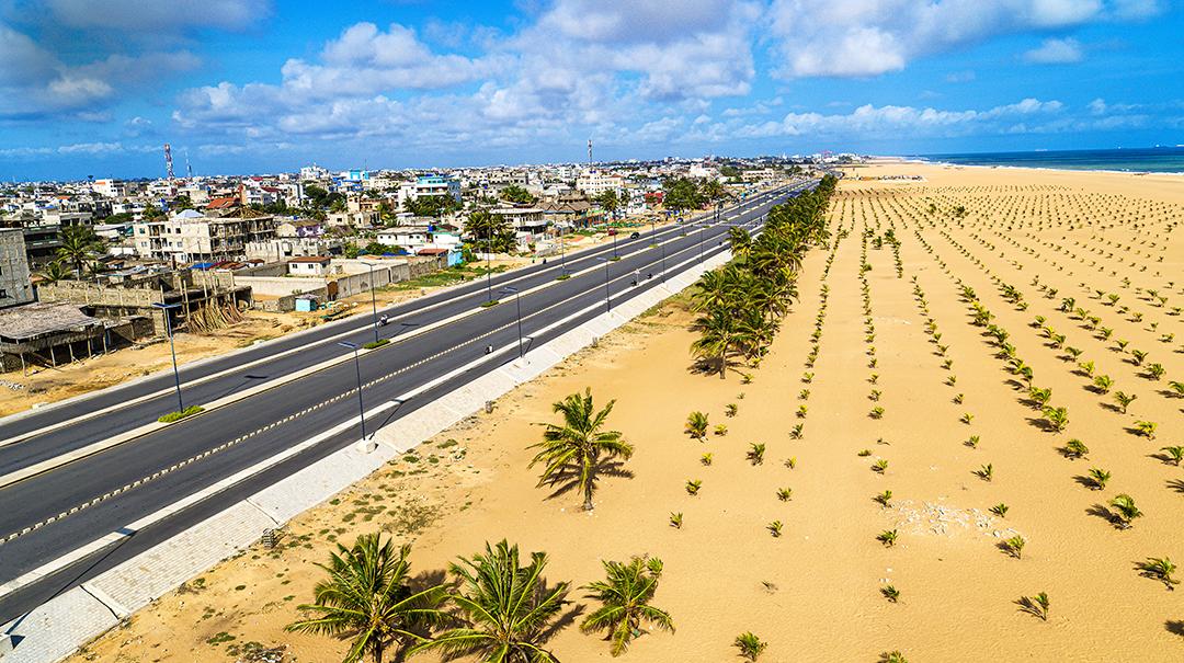 Plantations de jeunes palmiers en bord de mer pour lutter contre l'érosion du littoral, à Cotonou, en septembre 2020.