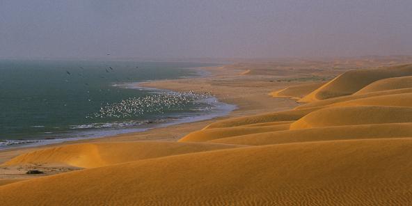 Serie Mauritanie Maimouna Mint Saleck Plaide Pour Le Banc D Arguin 4 5 Jeune Afrique